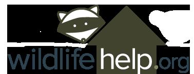 Wildlife Help